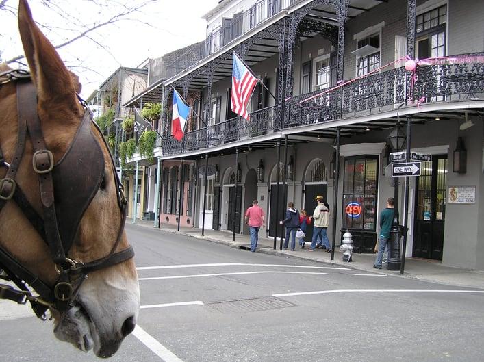 New_Orleans-royal