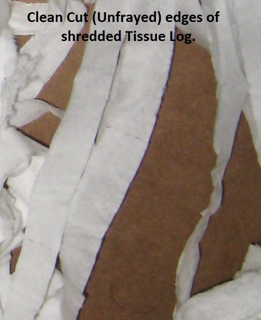 tissue shredder tissue.jpg